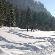 Snowshoe walking trails